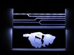 Service backplate - CG corse et chemin lumière