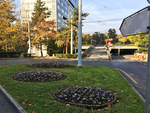 Rond-Point fleuri 1611130920561858214634421