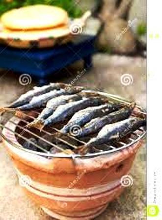 [INFOS Techniques]  choisir un barbecue.. 16120501263118477114684138