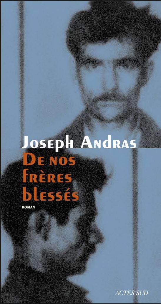 De nos freres blesses - Joseph Andras