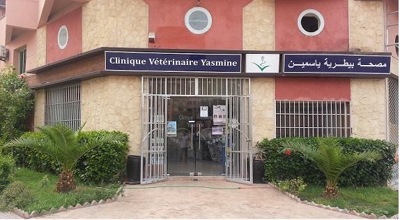[Maroc/Commerces]  Véto et centre de toilettage pour chien : où ? 17012801145218477114807627