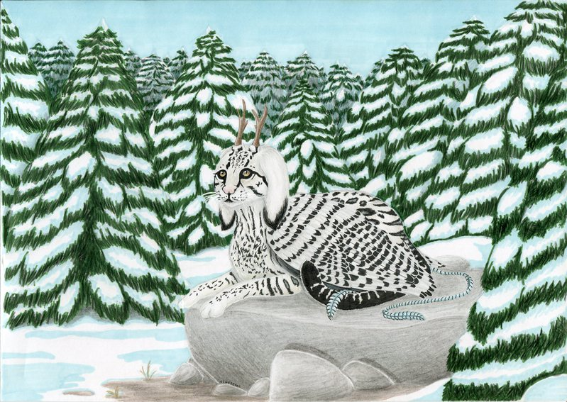 Tigereyes - commande Lyls final