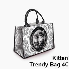 sacs - trendy10